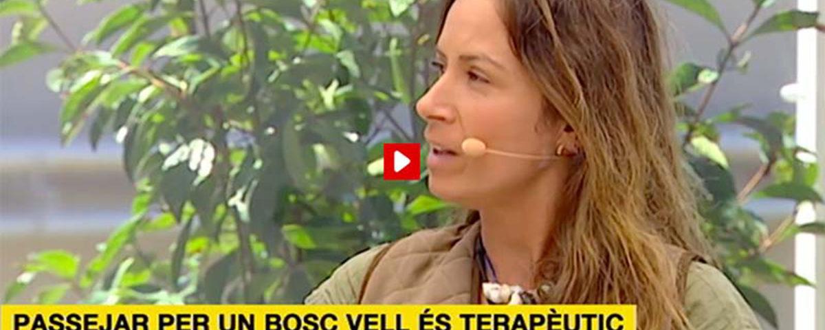 entrevista tv3 bany de bosc